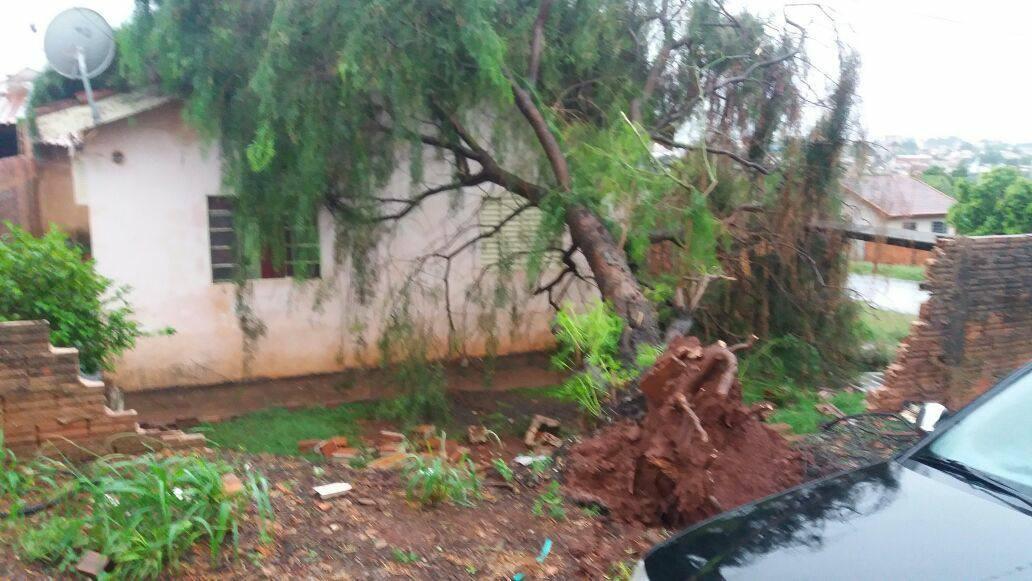 Chuva causa estragos em Andirá: Prefeitura e Defesa Civil mobilizam apoio aos moradores